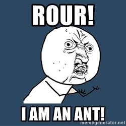 Y U No - ROur! I am an ant!
