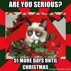 GRUMPY CAT ON CHRISTMAS - are you serious? 51 more days until christmas
