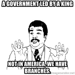 aysi - A GOVERNMENT LED BY A KING NOT IN AMERICA, WE HAVE BRANCHES.