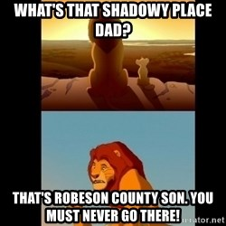 Lion King Shadowy Place - What's that shadowy place dad? That's Robeson county son. You must never go there!
