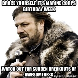 Brace yourself - Brace Yourself, It's MArine Corps Birthday Week Watch out for sudden breakouts of awesomeness