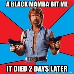 Chuck Norris  - A Black Mamba Bit Me It Died 2 Days later