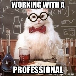 Chemistry Cat - WORKING wITH A PROFESSIONAL