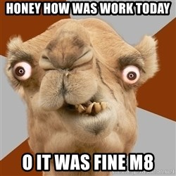 Crazy Camel lol - honey how was work today  o it was fine m8