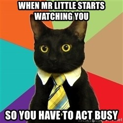 Business Cat - when mr little starts watching you so you have to act busy