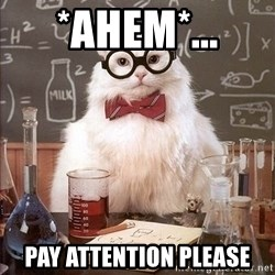 Chemistry Cat - *ahem*... Pay attention please