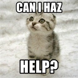 Can haz cat - CAN I HAZ HELP?
