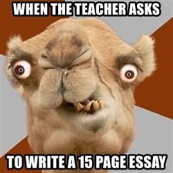 Crazy Camel lol - When the teacher asks to write a 15 page essay