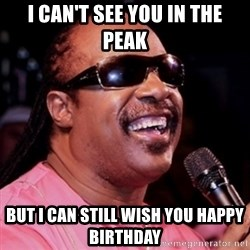 stevie wonder - i can't see you in the peak but i can still wish you happy birthday