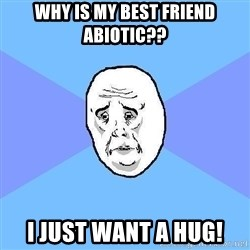Okay Guy - why is my best friend abiotic?? I just want a hug!