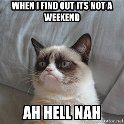 Grumpy cat good - When I find out its not a weekend Ah Hell nah