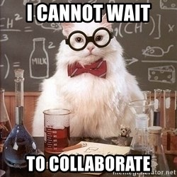 Chemistry Cat - I cannot wait  to collaborate