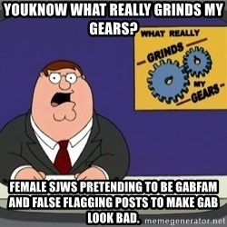 What really grinds my gears - Youknow what really grinds my gears? Female SJWs pretending to be gabfam and false flagging posts to make gab look bad.