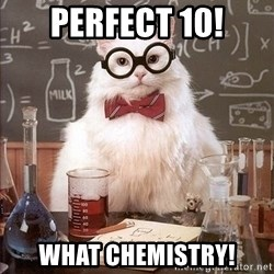 Chemistry Cat - Perfect 10! What chemistry!