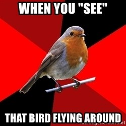 """Retail Robin - When you """"see"""" that bird flying around"""