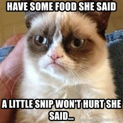 Grumpy Cat Face - Have some food she said A little Snip won't hurt she said...
