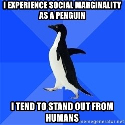 Socially Awkward Penguin - I experience social marginality as a penguin i tend to stand out from humans