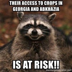 evil raccoon - Their access to crops in Georgia and abkhazia Is at risk!!