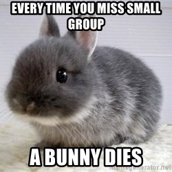 ADHD Bunny - Every time you miss small group A bunny dies