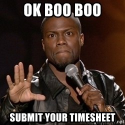 Kevin Hart - ok boo boo submit your timesheet