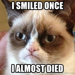 Angry Cat Meme - I smiled onCe I almost died