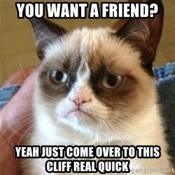 Grumpy Cat  - you want a friend? yeah just come over to this cliff real quick