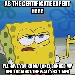 I'll have you know Spongebob - As the certificate expert here i'll have you know i only banged my head against the wall 263 times