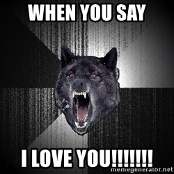 Insanity Wolf - when you say  I love you!!!!!!!