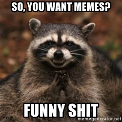 evil raccoon - SO, You want memes? FUNNY SHIT