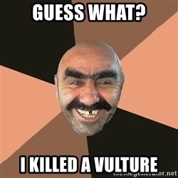 Provincial Man - Guess what? i killed a vulture