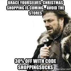 Prepare yourself - brace yourselves, christmas shopping is coming... avoid the stores 30% off with code SHOppingsucks
