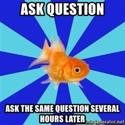 Absentminded Goldfish - Ask question Ask the same question several hours later