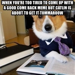 Dog Lawyer - When YOU'RE too TIRED to come up with a good come back meme but Catlin is about to get it TOMMAROOW