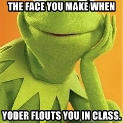 Kermit the frog - the face you make when yoder flouts you in class.