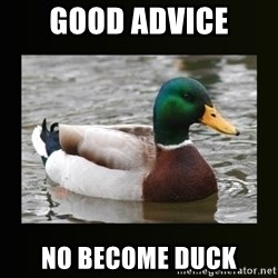 good advice duck - good advice no become duck