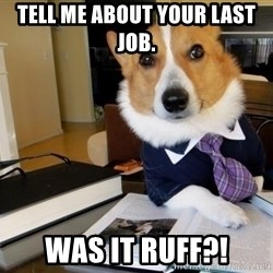 Dog Lawyer - Tell me about your last job. Was it ruff?!