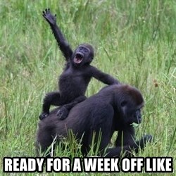 Happy Gorilla - ready for a week off like