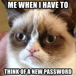 Angry Cat Meme - me when i have to  think of a new password
