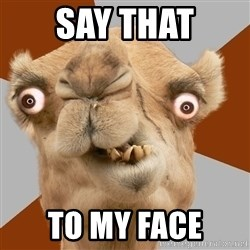 Crazy Camel lol - say that to my face