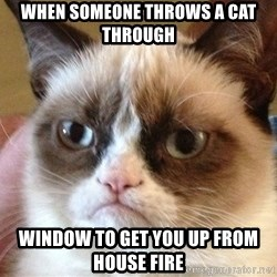 Angry Cat Meme - WHEN SOMEONE Throws a cat through  window to get you up from House fire