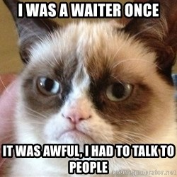 Angry Cat Meme - I was a waiter once It was awful, I had to talk to people