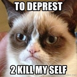 Angry Cat Meme - To Deprest 2 Kill my self