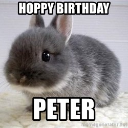 ADHD Bunny - Hoppy biRthday Peter