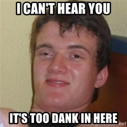 Really Stoned Guy - I can't hear you it's too dank in here