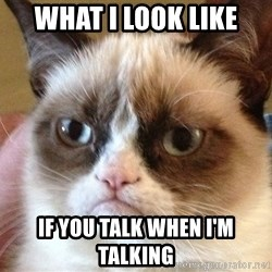 Angry Cat Meme - what I look like if you talk when i'm talking