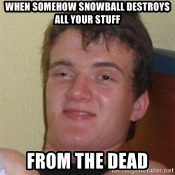 Really Stoned Guy - when somehow snowball destroys all your stuff from the dead