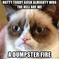 Angry Cat Meme - Hotty toddy gosh almighty who the hell are we A dumpster fire