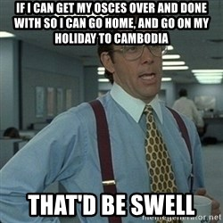 Yeah that'd be great... - IF I CAN GET MY OSCES OVER AND DONE WITH SO I CAN GO HOME, AND GO ON MY HOLIDAY TO CAMBODIA THAT'D BE SWELL