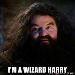 Yer A Wizard Harry Hagrid - i'm a wizard harry