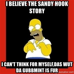 Homer retard - I believe the sandy hook story I can't think for myself,das wut da gubbmint is fur